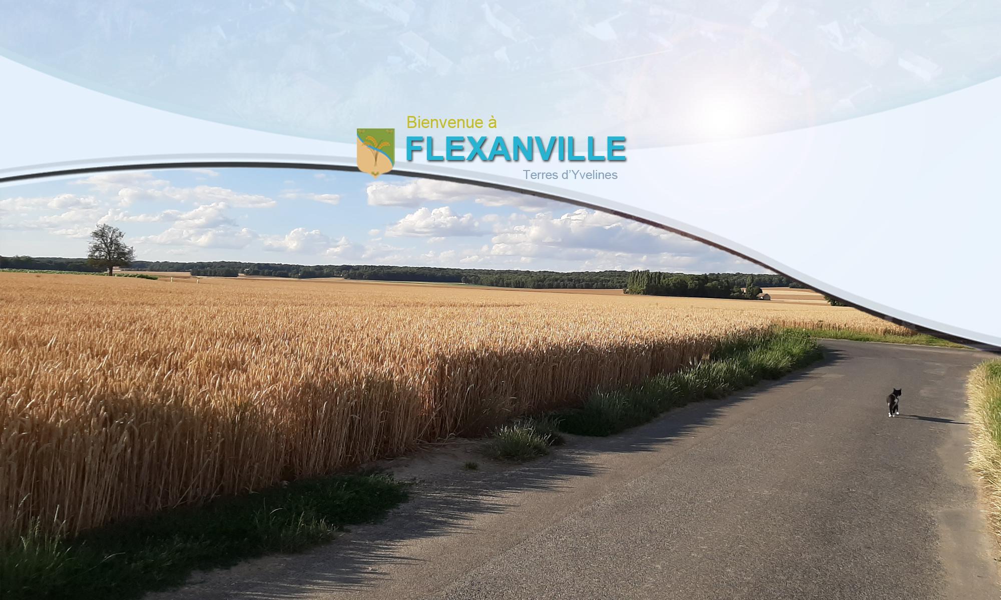 Flexanville